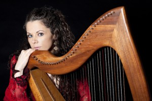 Will 2016 be a Turning Point for the Irish Harp?