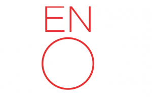 ENO Baylis Project Manager