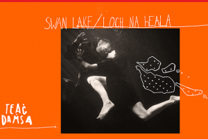 Swan Lake/Loch na hEala @ Sounds From a Safe Harbour 2019