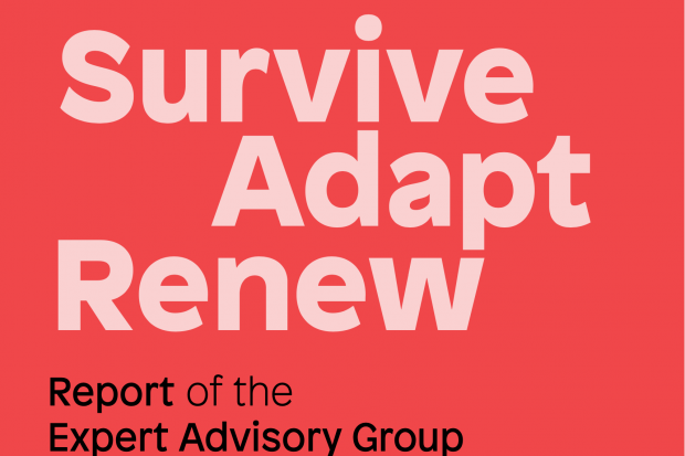 Arts Council Publishes Report of Advisory Group on Covid-19 and the Arts